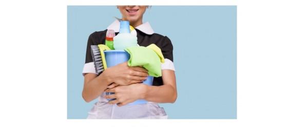 Lezioni di pulizia....impariamo a custodire i nostri vibratori - sex toys
